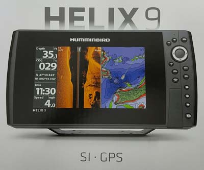 HumminBird Picture